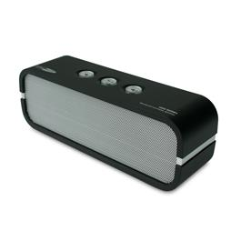 Caliber portable speaker HSG309BT