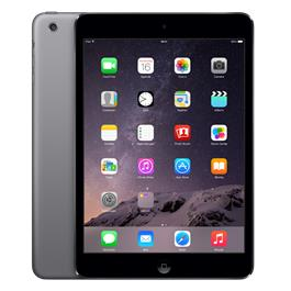 iPad Mini 2 16G Gray